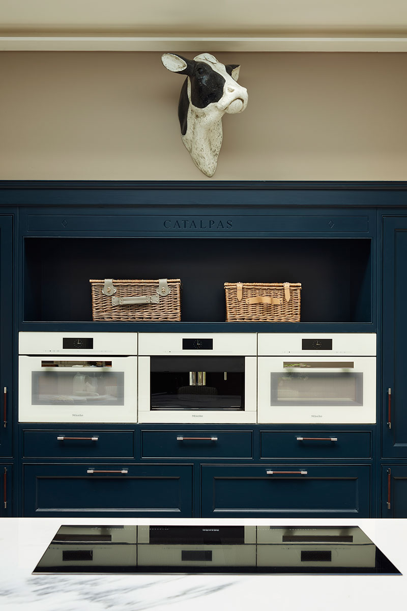 Row of ovens and induction hob