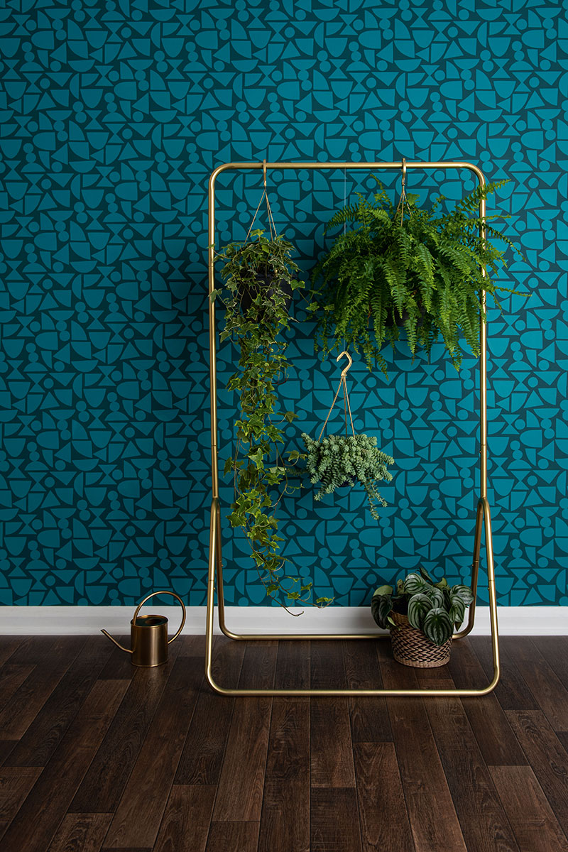 Metallic clothes rail with hanging plants in front of wall papered with patterned wallpaper in two shades of dark blue
