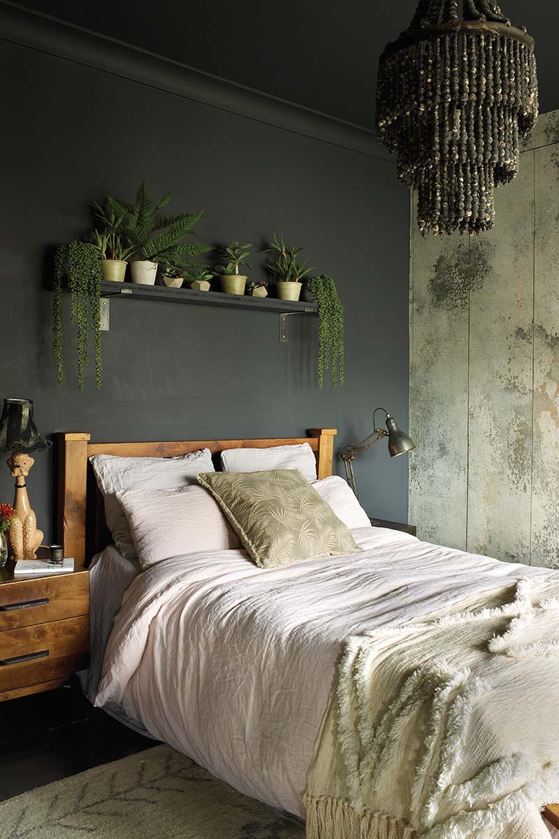 Dark wall bedroom with plants