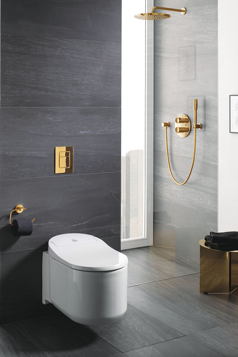 Grohe Sensia Arena shower toilet