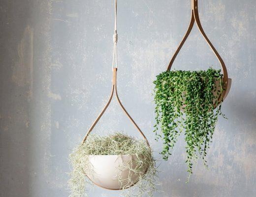 Ceiling Planter
