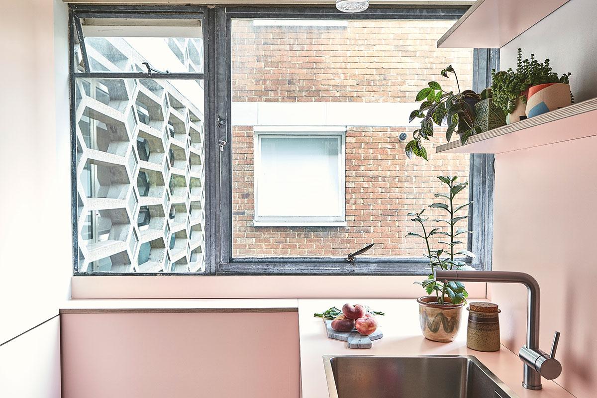 Pink Pluck kitchen