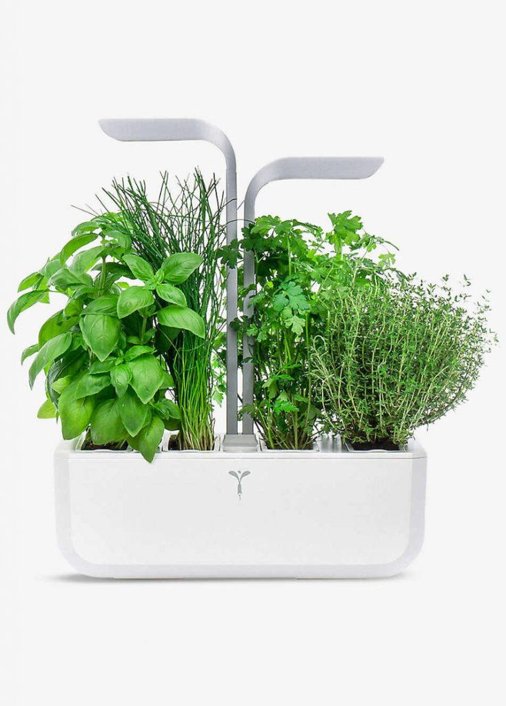 How to: Herb garden
